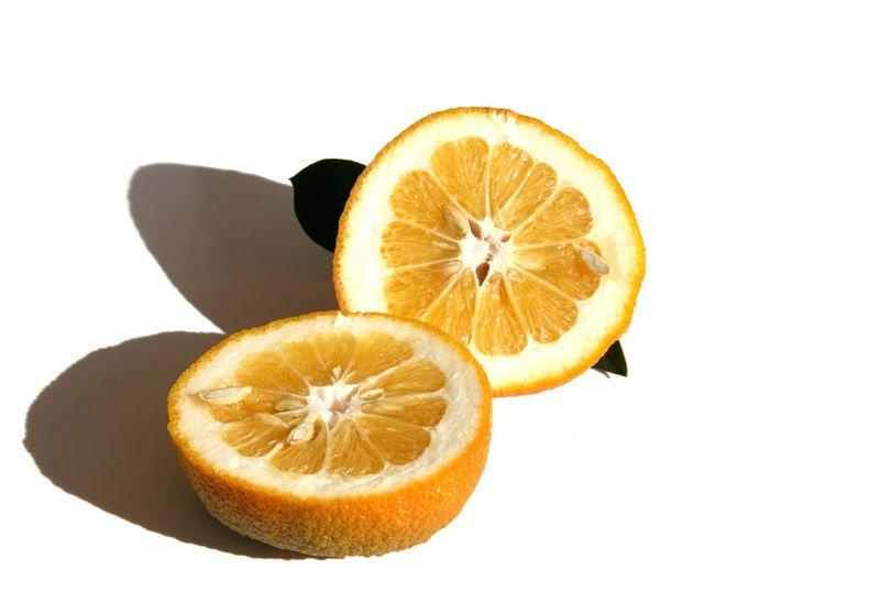 Sweet orange dolce del gargano