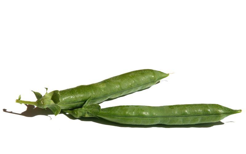 بازلاء  peas