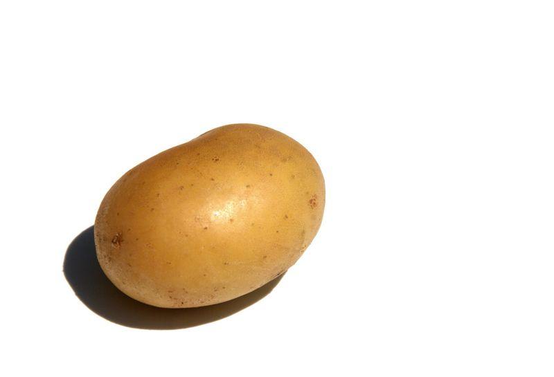Papa  patata coquine