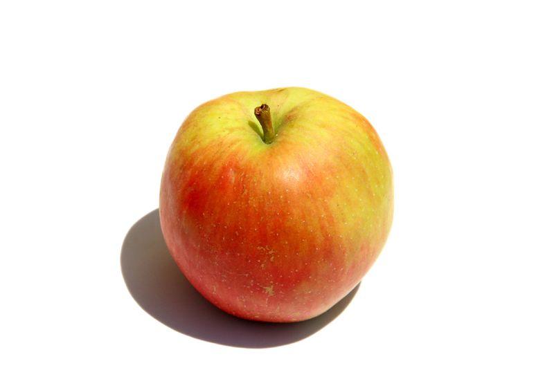 Pomme des moissons