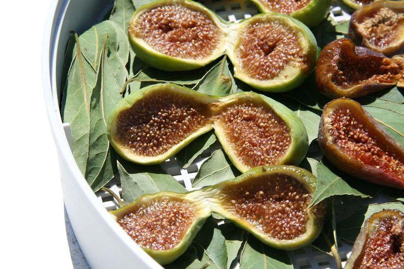 comment faire des figues s ch es aromatis es figolime figolimao la cuisine du jardin. Black Bedroom Furniture Sets. Home Design Ideas