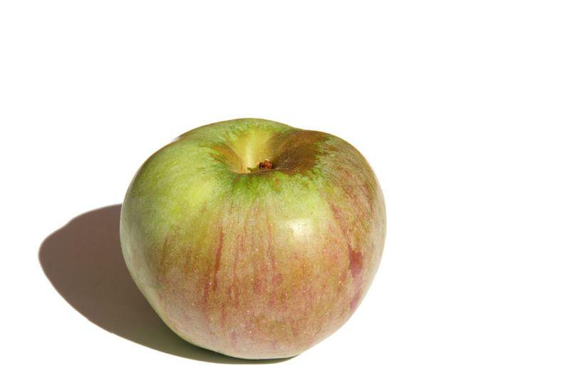 Pomme ontario apple