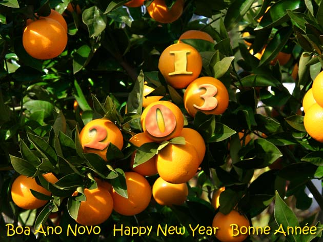 Happy new year laranja 2013