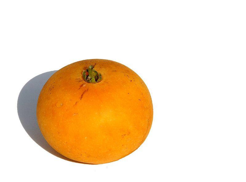 Pomme caffre