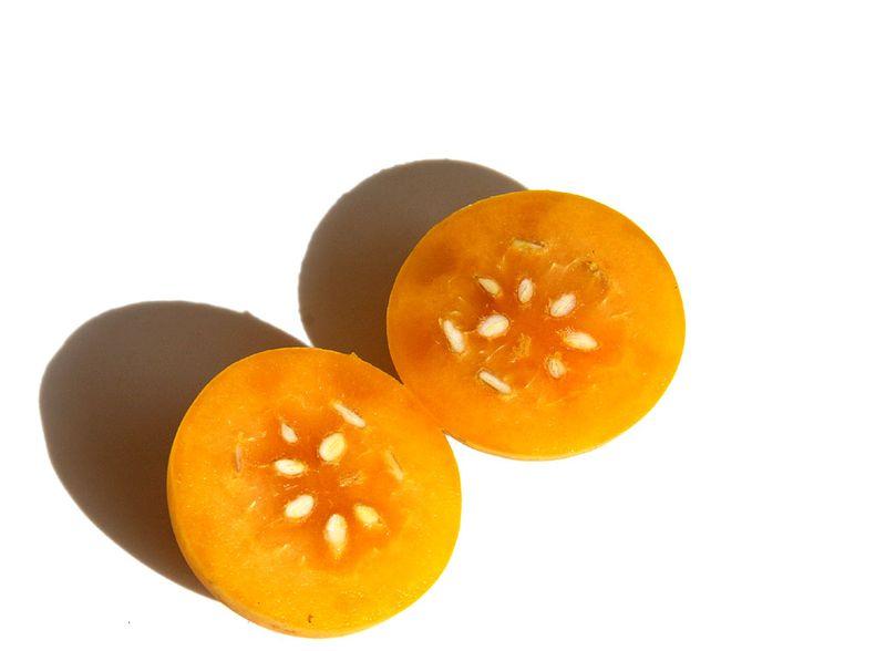 Pomme caffre  dovyalis caffra