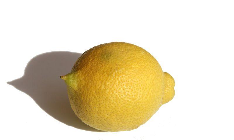 Lemon limon citron