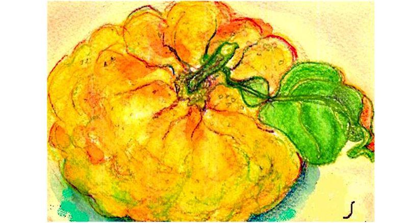 Yuzu lion orange