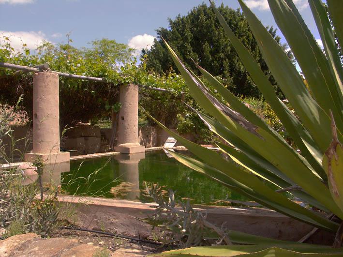 Moncarapacho irrigation gravitaire récupérée ms