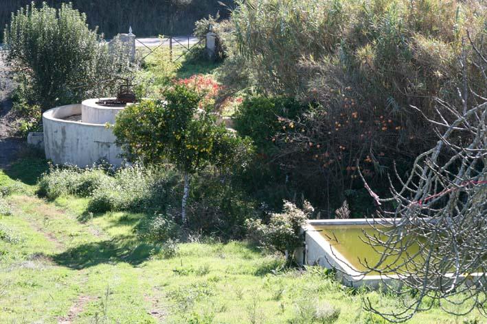 Saniya-puits Cercal Alentejo sm