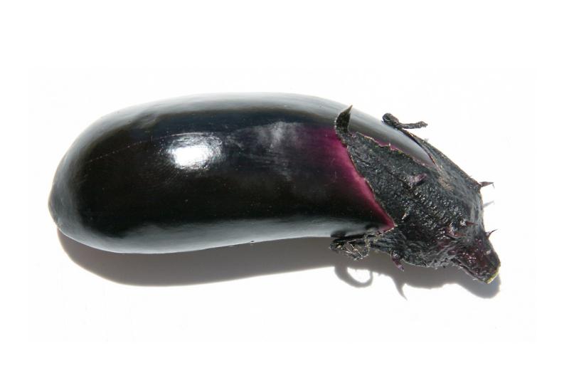 Ryoma Eggplant