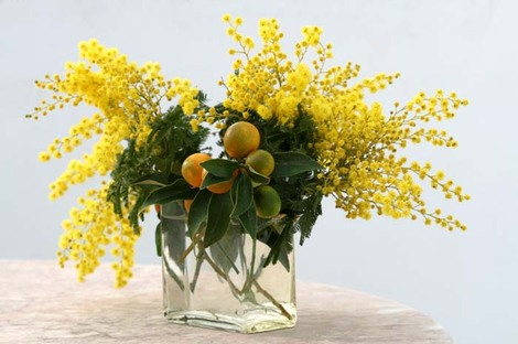 Bouquet_mimosa_kumquat