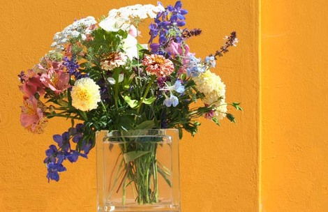 August_bouquet_aout