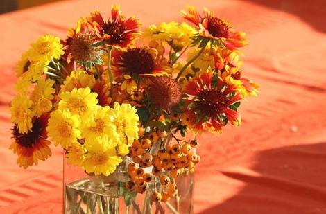 November_bouquet_novembre_2