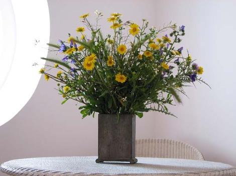 Fleurs_de_campagne_jaunes_et_bleues
