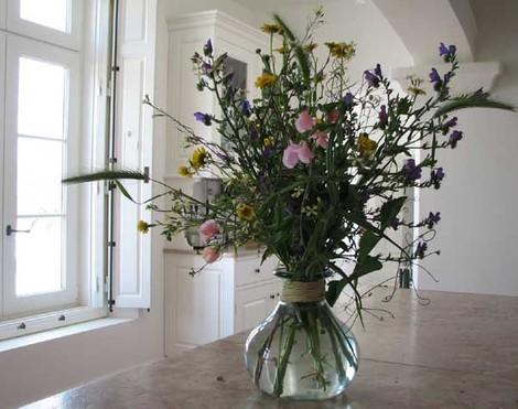 Fleurs_des_champs_pois_de_senteur