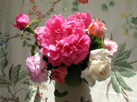 Flowers_on_flowers_fleurs_sur_fleurs