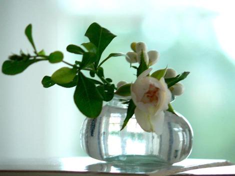 Une_rose