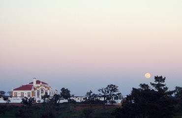 Lugar_do_olhar_feliz