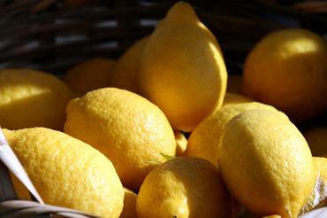Limao_lemon_citron