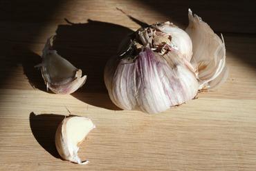 Garlic_alho_ail
