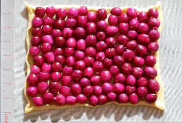 Brush_cherry_pie_tarte_cerise_austr