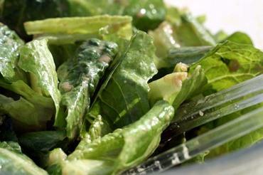 Salade_de_laitue_romaine