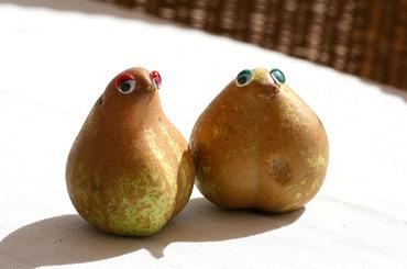Poire_pear_pra_3