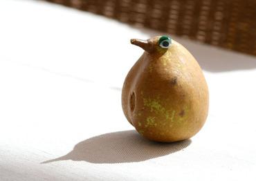 Poire_pear_pra_5