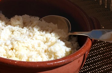 Rice_riz_arroz_oryza_sativa