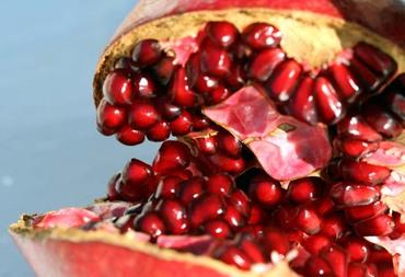 Pomegranate_rom_grenade_punica_gran