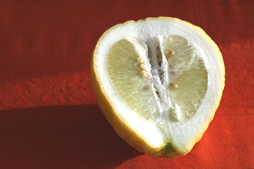 Open_lemon_citron_coup