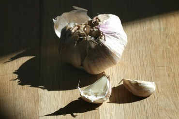 Garlic_ail_alho