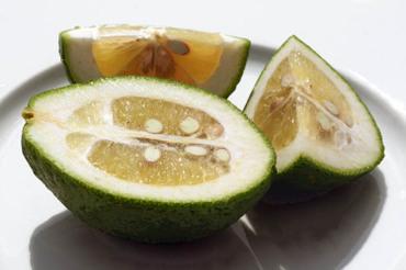 Lemon_malaga_citron_lemao