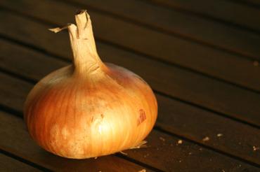 Yellow_onion_oignon_jaune