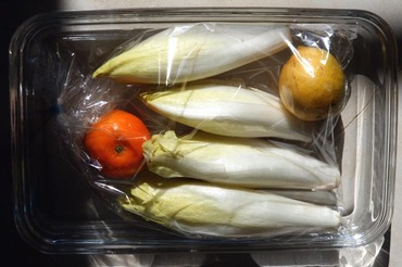 Chicory_endive_chicon_lemon_citron