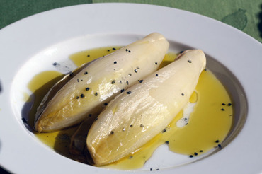 Chicory_endive_endivia_lemon_citron