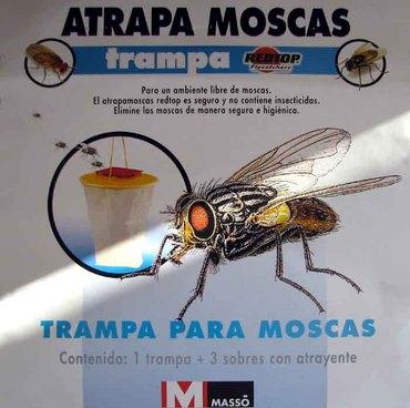 Atrapa_moscas