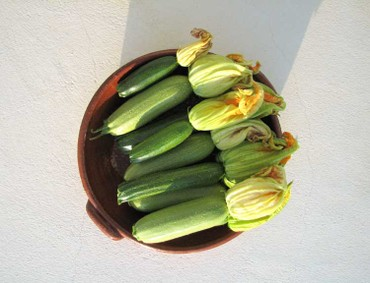 Courgettes_1