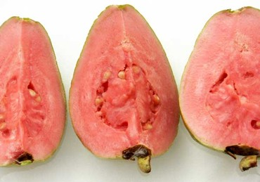 Guava_goyave_psidium_guajava