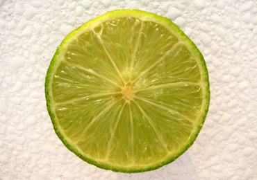 Lime_citron_vert