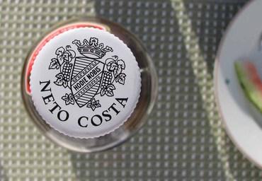 Neto_costa