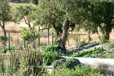 Jardin_de_sable