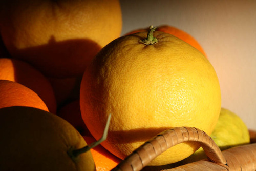 Grapefruit_pamplemousse