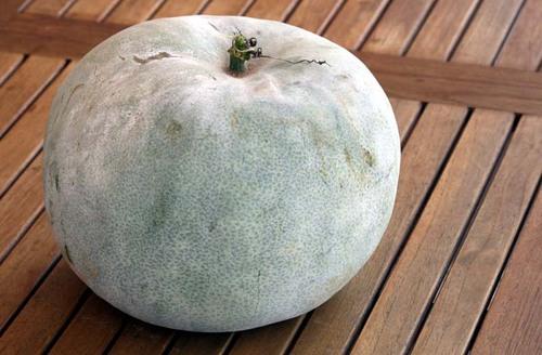 Wax_gourd