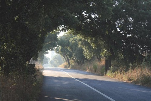 Country_road_route