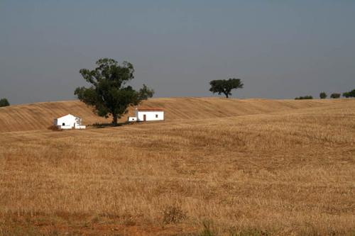 Farm_monte_ferme