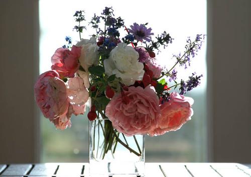 flowers language bouquet_roses.jpg