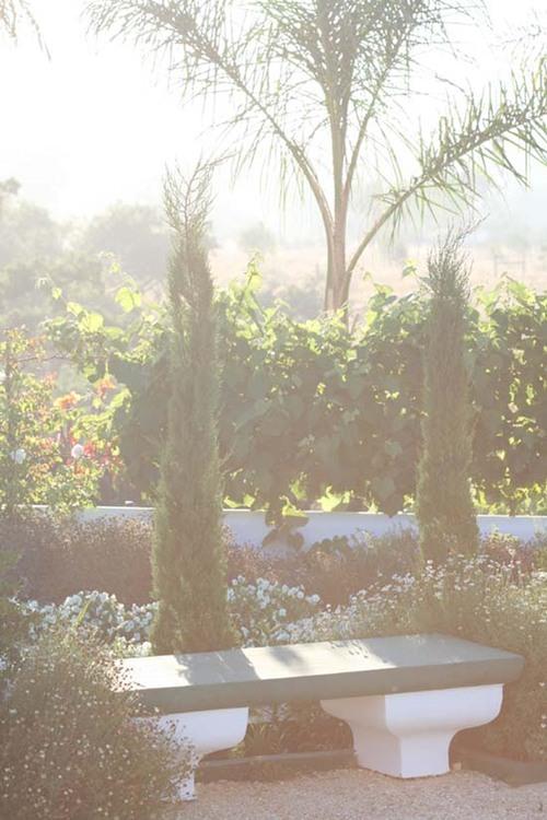 White_garden_jardin_blanc_jardim_branco