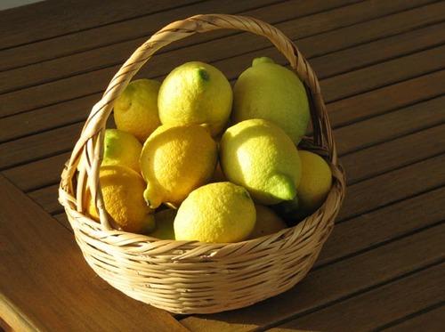 Lemon_limao_citron