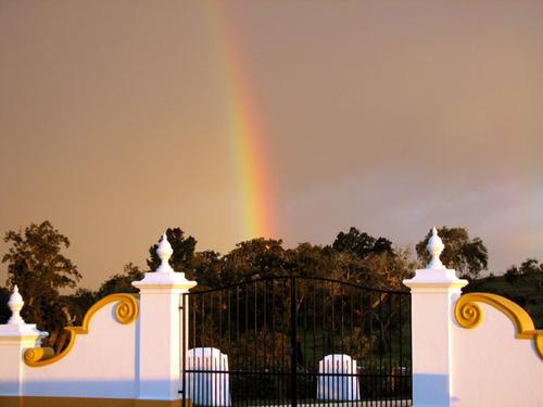 Rainbow_arc_en_ciel_fvrier